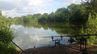 Newland Hall Fishery