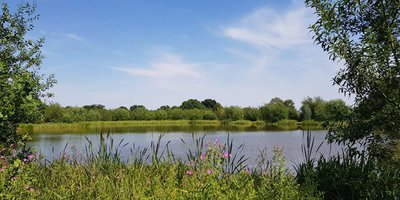 Coppice Lane Fishery