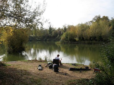 Harleston Wortwell and District Angling Club
