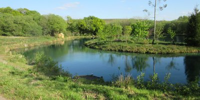 Llandyfan Camping and Fishing
