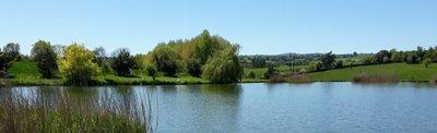 Andy's Fishing Lake